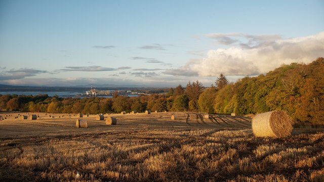 Harvested field beside the woods of Cromarty House