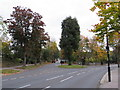 TQ3463 : Road junction near Selsdon by Malc McDonald