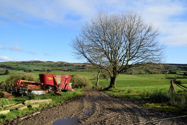 Muddy lane, Ballykeel by Kenneth  Allen