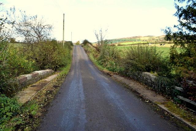 Small bridge along Reaghan Road by Kenneth  Allen