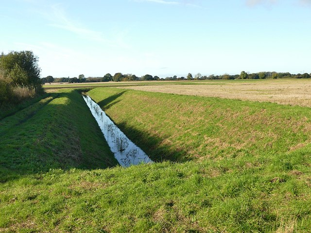Field drain beside Wood Lane
