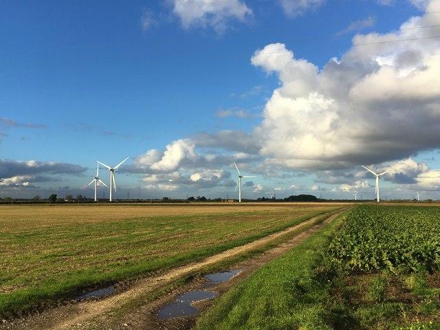 Track leading to Rusholme Wind Farm