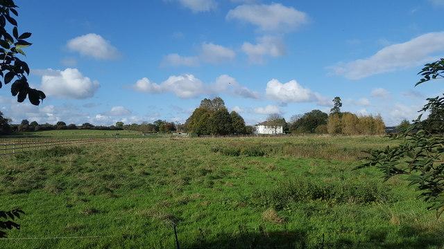 Grassland near the church