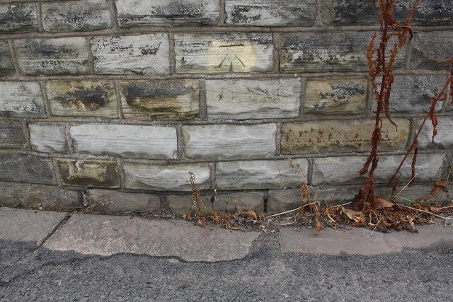 Benchmark on Woodhouse Bridge, Woodhouse Lane
