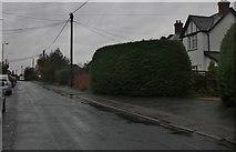 SU5989 : Station Road, Wallingford by David Howard