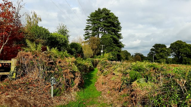 Public path to Newent