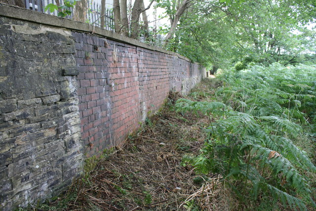 Overgrown footpath along the SW bank of the River Calder