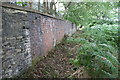 SE1522 : Overgrown footpath along the SW bank of the River Calder by Luke Shaw