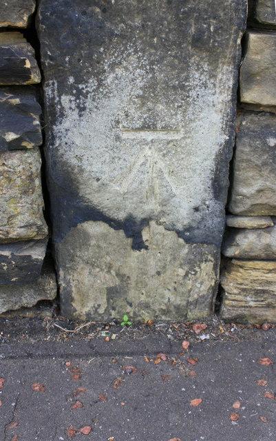 Benchmark on boundary wall of #48 Newton Park, Coach Road