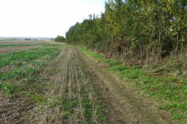 Footpath towards Dichford