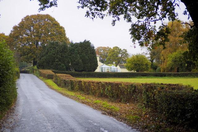 Road to Itton Common
