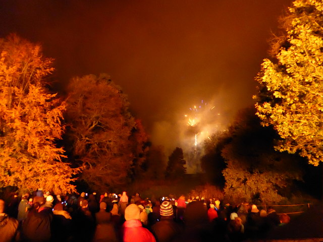 Part of the fireworks display on Bonfire Night 2019 in Rectory Field, Church Stretton
