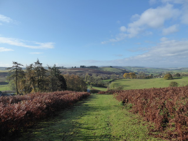 View on the bridleway just above Little Moelfre farm