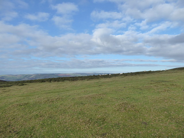 View on the saddle between Moelfre Hill and Gors Lydan