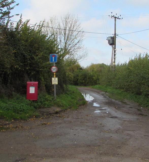 Road to Jaxons Farm, Whitminster