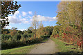 SO7583 : Waymarked track in the Severn Valley Country Park, Shrophshire by Roger  Kidd