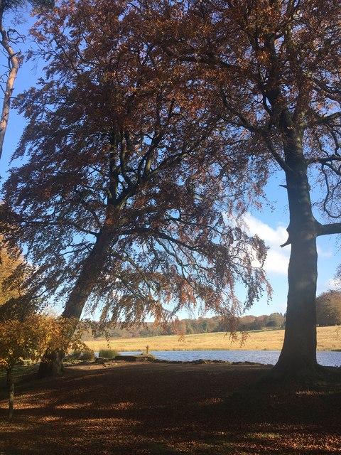 The lake at Longshaw