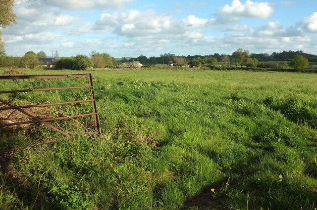 Field near Burton