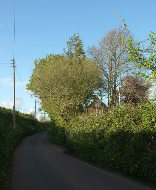 Lane from Holywell