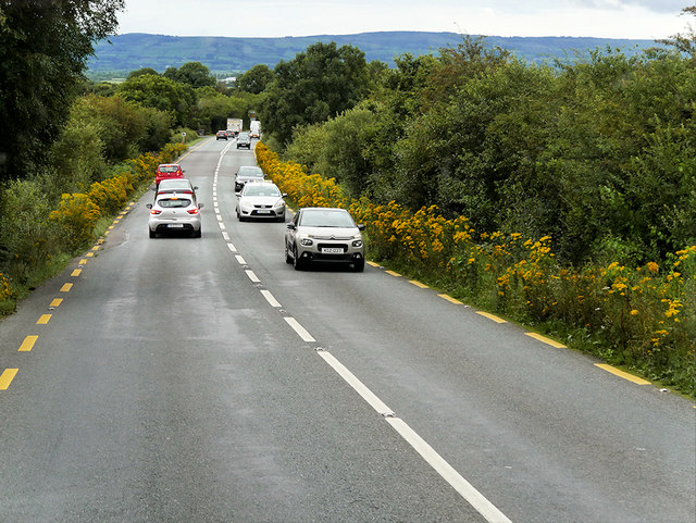 N22 South of Farranfore