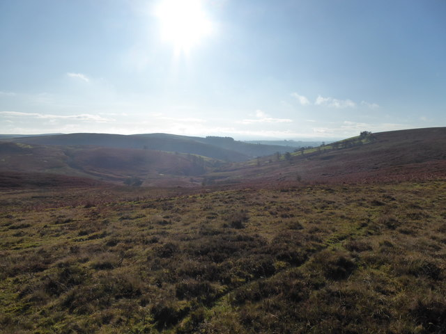 View down into the valley of the Camddwr from north of Gors Lydan