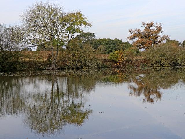 Lake near Pool Hall, Trescott, Staffordshire