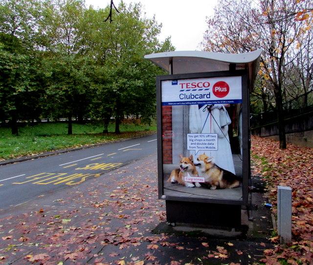 Tesco Clubcard Plus advert on a Crindau bus shelter, Newport