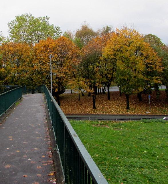 Autumn colours, Crindau, Newport