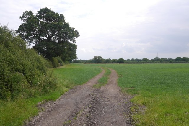 Field, Lach Dennis