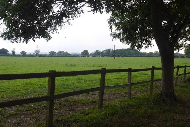 Field by Eardswick Hall