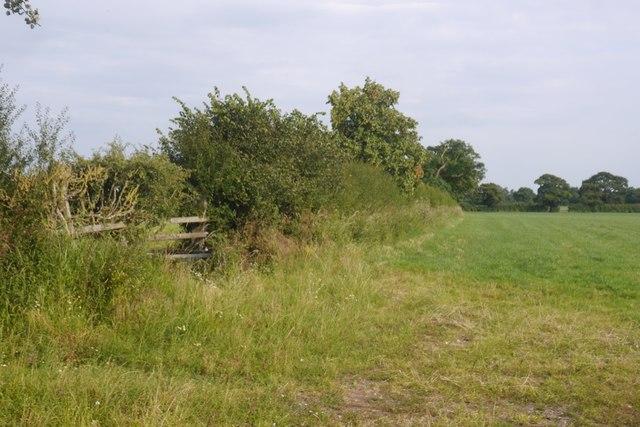 Fields beside Baddiley Lane