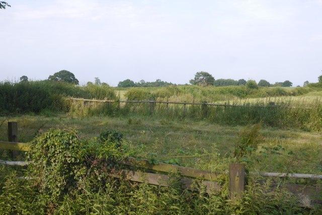 Near Wrenbury Heath