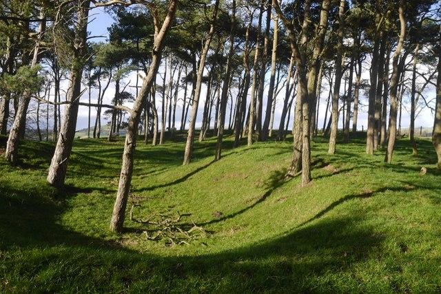 Summit area, Pisgadh Hill
