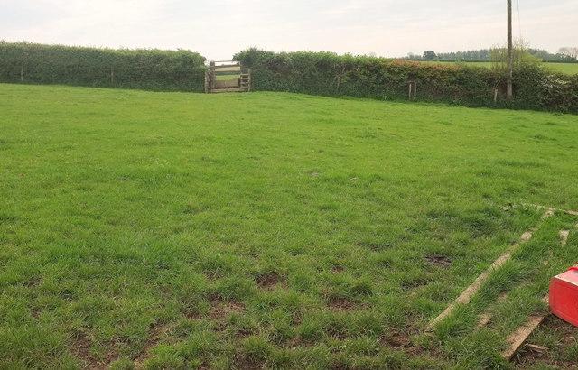 Field near Norton Farm