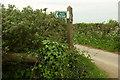 SX4665 : Footpath sign to Newhouse Farm by Derek Harper