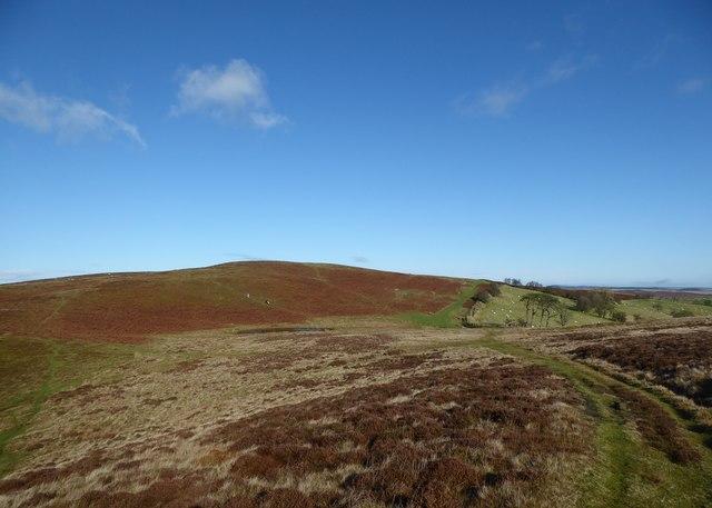 Scene on Tylcau Hill looking northwards