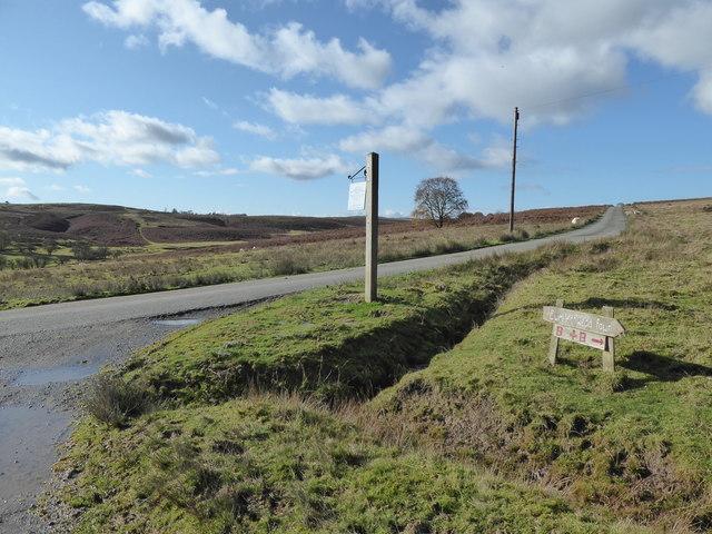 Scene on open grazing land near Cwmllechwedd Fawr farm