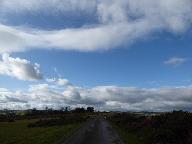 Lane through sheep pastures