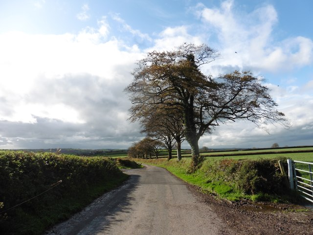 Minor road to Trittencott Cross