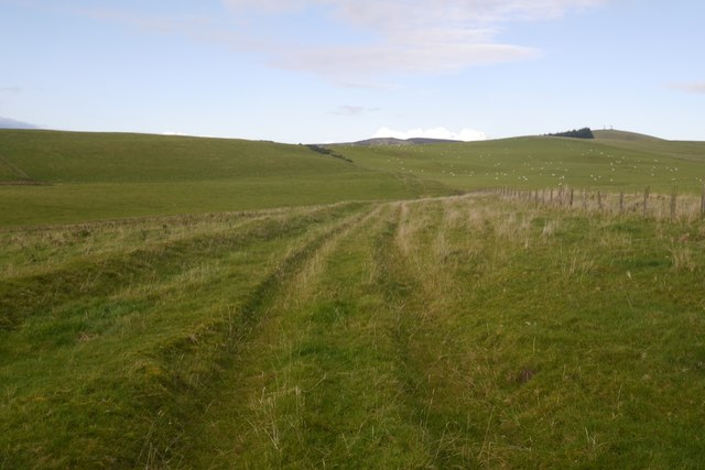 The Old Drove Road