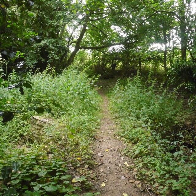 Path, Butterley