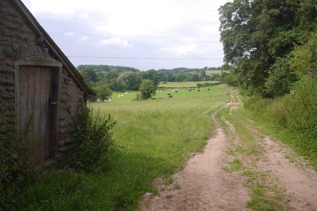 Farm track, Buckenhill Manor