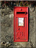 NS1981 : Postbox on Shore Road by Thomas Nugent