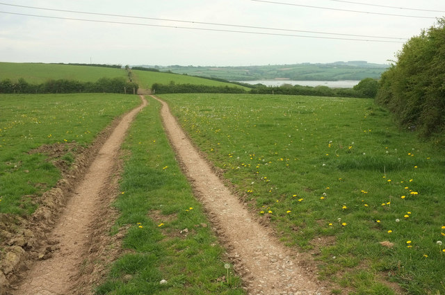 Tamar Valley Discovery Trail near Bere Ferrers