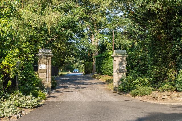 Driveway to Pachesham Park