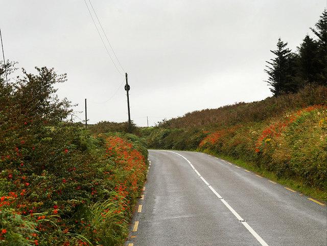 Slea Head Drive towards Ballymana
