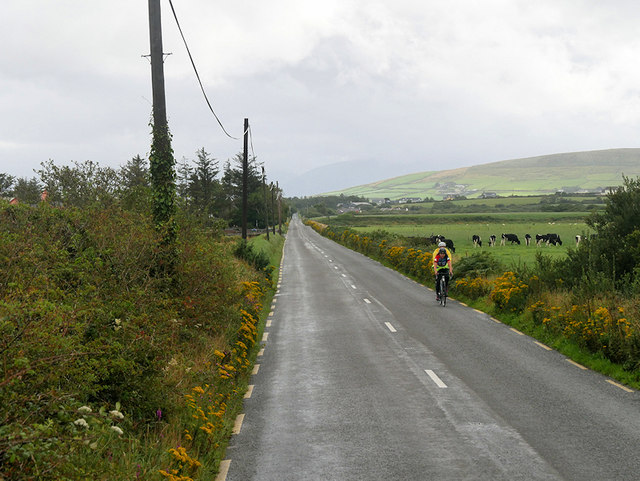 Cyclist on the Slea Head Drive near Kilfountain
