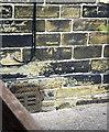 SE1527 : Benchmark on #185 Wilson Road by Luke Shaw