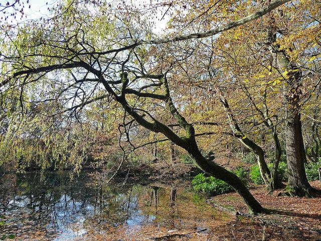 Goffs Park, Crawley (2)