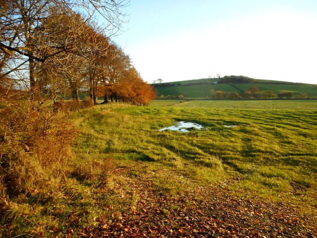 Field to the south of Auchenhowie Road